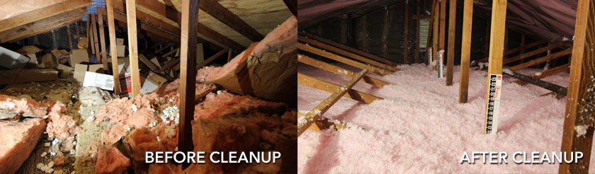 attic clean out services