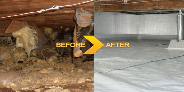 Crawl-Space-Clean-Up-Services